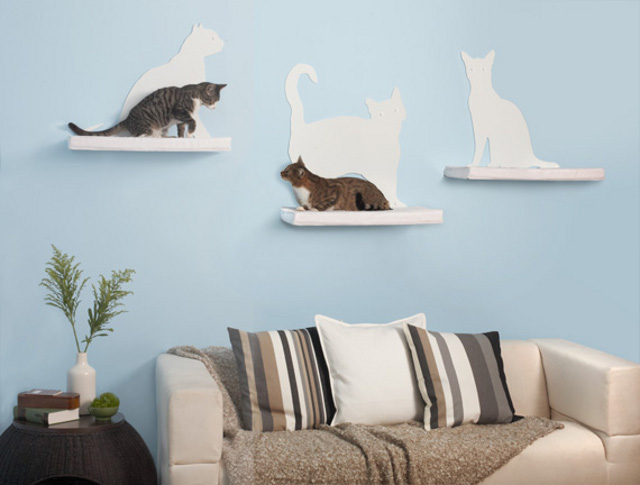 półeczki dla kotów i z kocim zarysem - via therefinedfeline.com