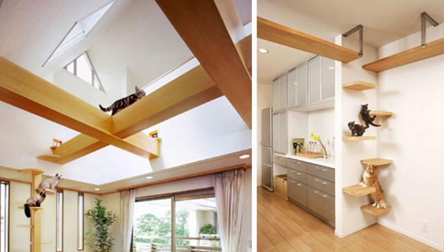 dom przystosowany dla koków by asahi-kasei.co.jp