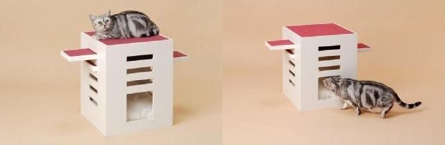 akcesoria dla kotów od clavo.jp