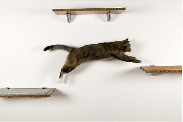 kocie półki - via squarecathabitat.com