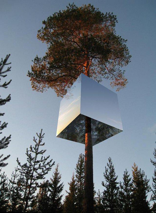 domek na drzewie Tham & Videgard