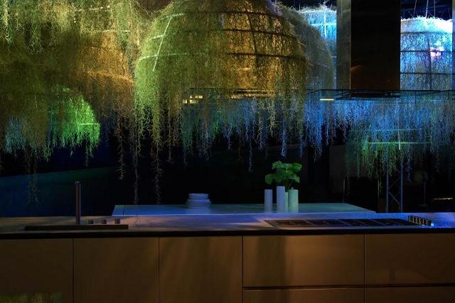 Liany w kuchni - Rainforest od Boffi