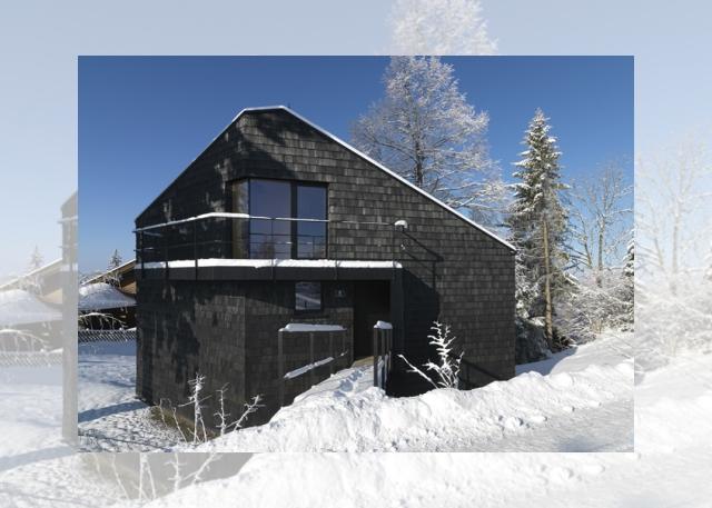 czarny domek od frontu (Ferienhaus Girardi by Philip Lutz)