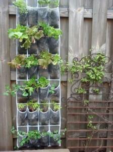 Shoe-Organizer-Garden