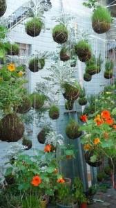 Suspended-String-Garden