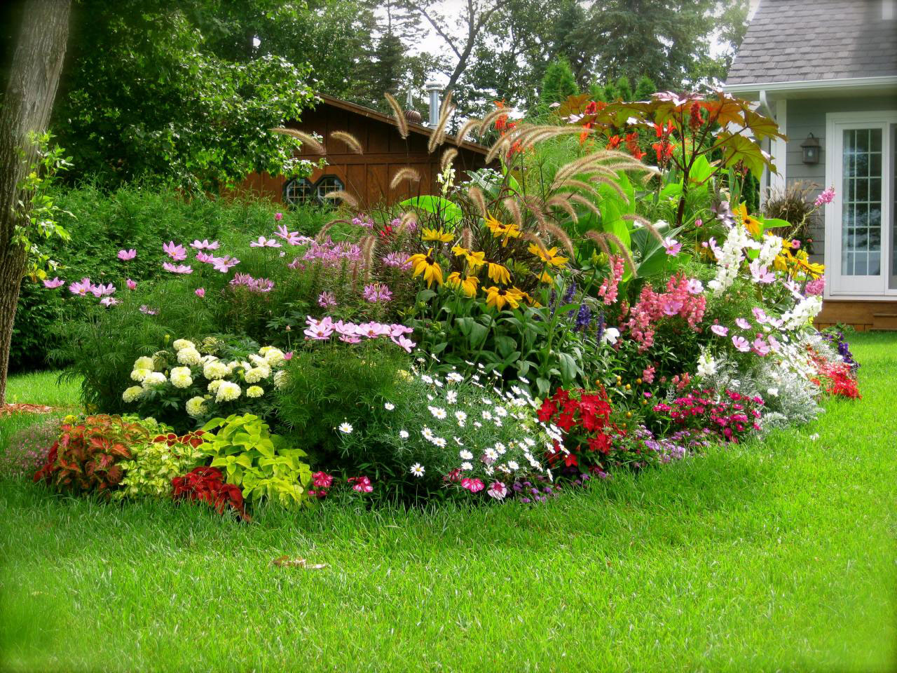 Фото квітників на дачі 20 фотография